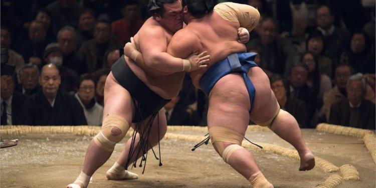 Wrestling sumo Japanese sports