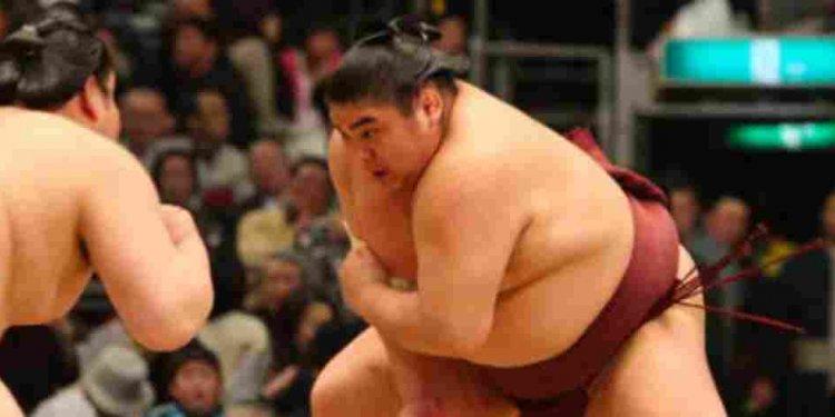 Jan 29th, Sumo Wrestler