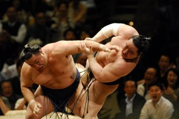 Sumo Fighting